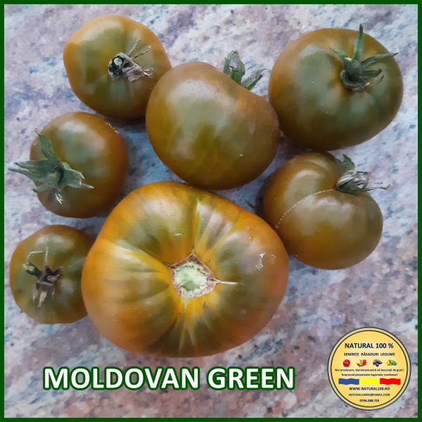 MOLDOVAN GREEN 0