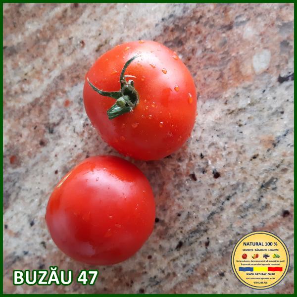 BUZĂU 47 0