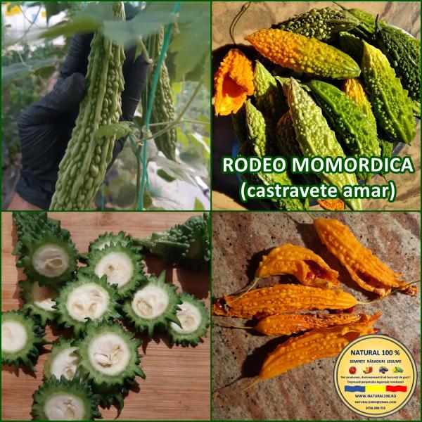 RODEO MOMORDICA (AMAR) 0