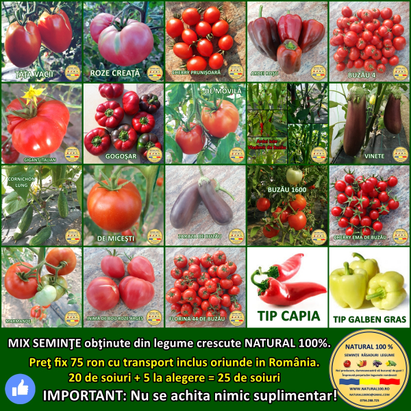 MIX 25 soiuri de legume crescute NATURAL 100% (transport gratuit oriunde in Romania) 0