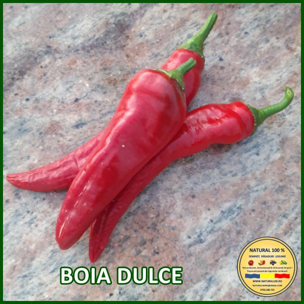 BOIA DULCE 0