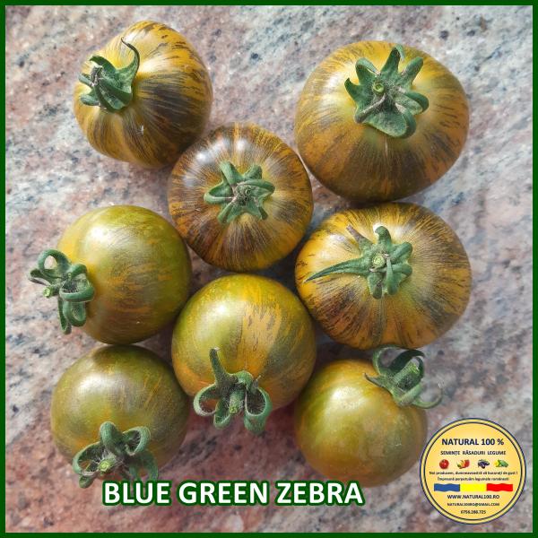 BLUE GREEN ZEBRA 0