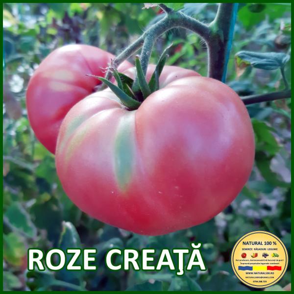 MIX 25 soiuri de legume crescute NATURAL 100% (transport gratuit oriunde in Romania) 2