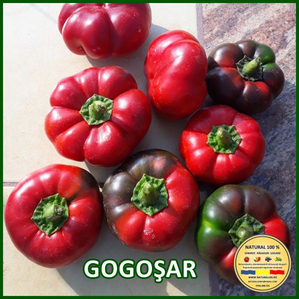 MIX 25 soiuri de legume crescute NATURAL 100% (transport gratuit oriunde in Romania) 13