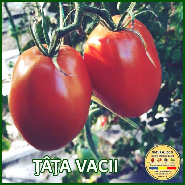 MIX 25 soiuri de legume crescute NATURAL 100% (transport gratuit oriunde in Romania) 1