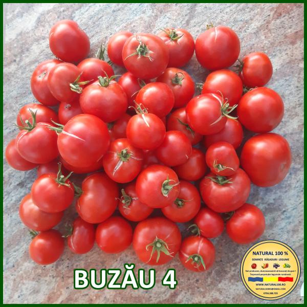 MIX 25 soiuri de legume crescute NATURAL 100% (transport gratuit oriunde in Romania) 10