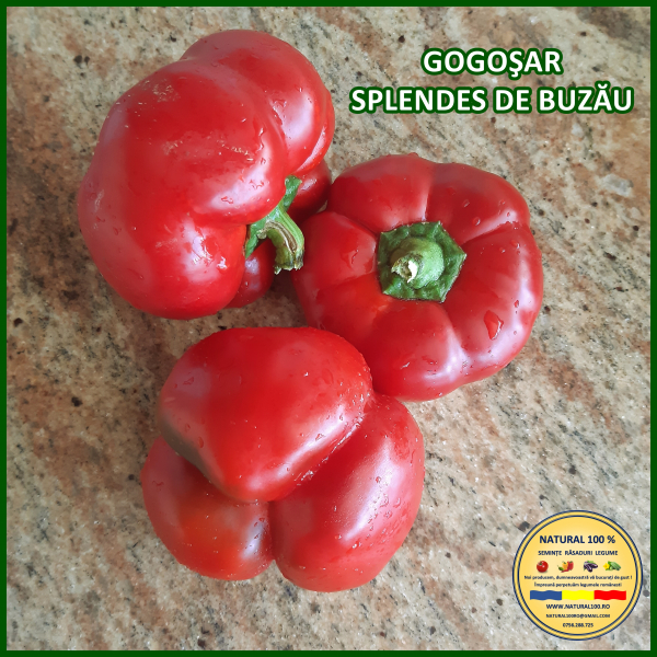 MIX 60 soiuri de legume crescute NATURAL 100% (transport gratuit oriunde in Romania) [28]