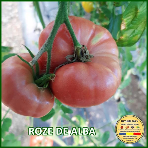 MIX 60 soiuri de legume crescute NATURAL 100% (transport gratuit oriunde in Romania) [42]