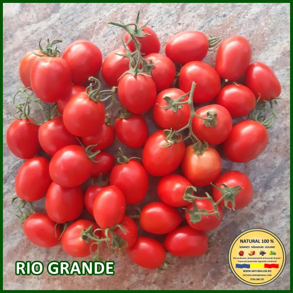 MIX 60 soiuri de legume crescute NATURAL 100% (transport gratuit oriunde in Romania) [49]