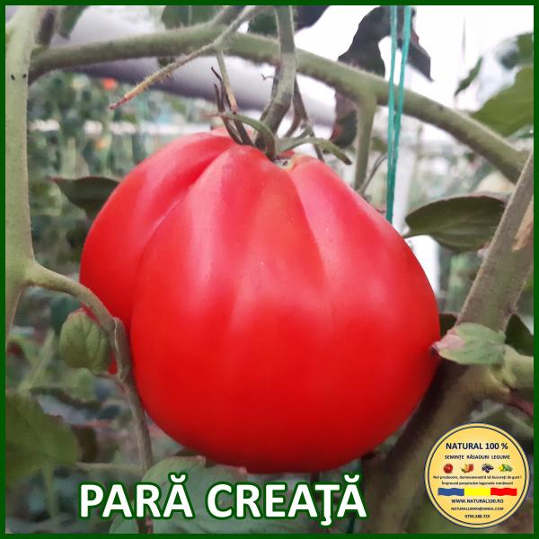 MIX 60 soiuri de legume crescute NATURAL 100% (transport gratuit oriunde in Romania) [17]