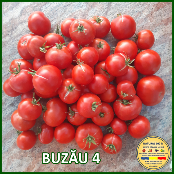 MIX 60 soiuri de legume crescute NATURAL 100% (transport gratuit oriunde in Romania) [11]