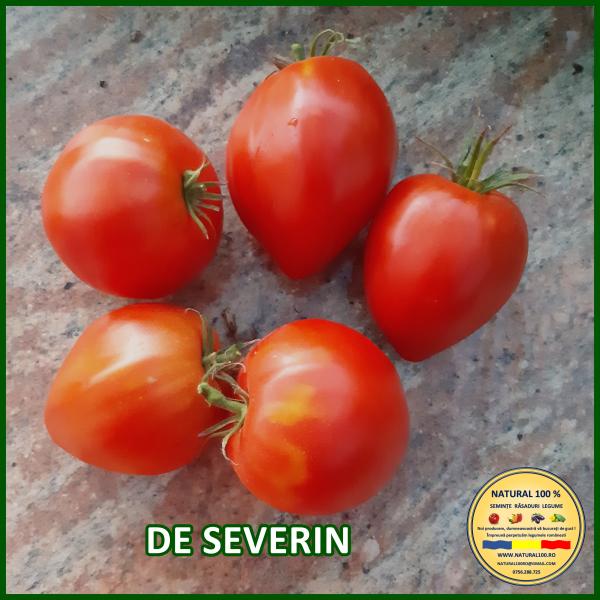 DE SEVERIN [0]