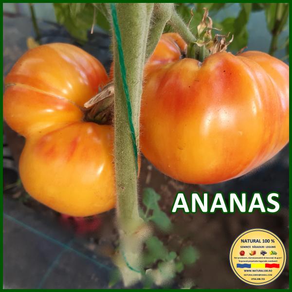 ANANAS 0