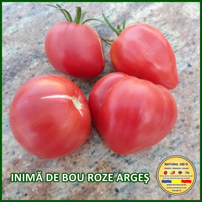 Rasad rosii INIMA DE BOU ROZE ARGES R050 aprilie.2021 0