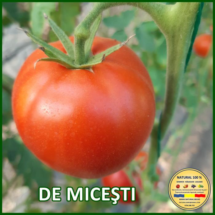 Rasad rosii DE MICESTI R007 mai.2021 0