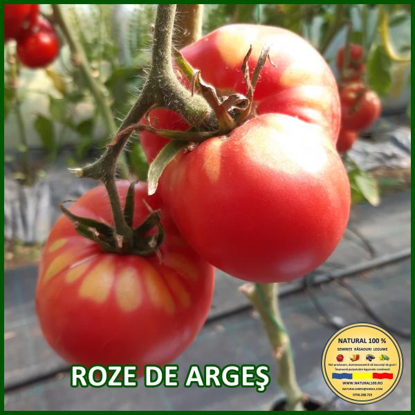 ROZE DE ARGEȘ 0