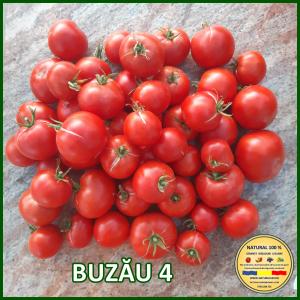 MIX 25 soiuri de legume crescute NATURAL 100% (transport gratuit oriunde in Romania)10