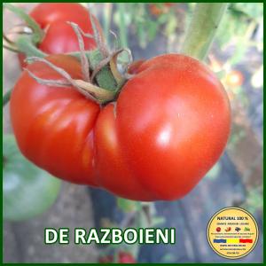 MIX 60 soiuri de legume crescute NATURAL 100% (transport gratuit oriunde in Romania) [23]