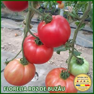 MIX 60 soiuri de legume crescute NATURAL 100% (transport gratuit oriunde in Romania) [33]
