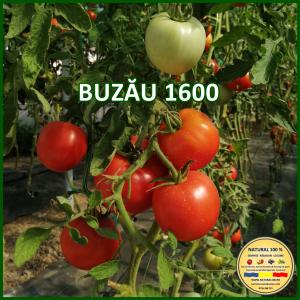 MIX 60 soiuri de legume crescute NATURAL 100% (transport gratuit oriunde in Romania) [40]