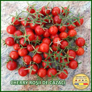 MIX 60 soiuri de legume crescute NATURAL 100% (transport gratuit oriunde in Romania) [3]