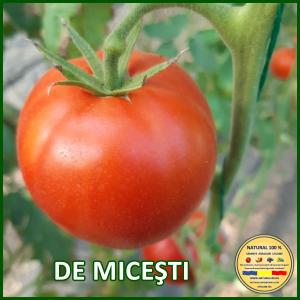 MIX 60 soiuri de legume crescute NATURAL 100% (transport gratuit oriunde in Romania) [36]