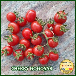 MIX 60 soiuri de legume crescute NATURAL 100% (transport gratuit oriunde in Romania) [19]