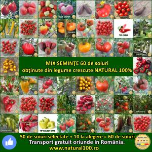 MIX 60 soiuri de legume crescute NATURAL 100% (transport gratuit oriunde in Romania) [0]