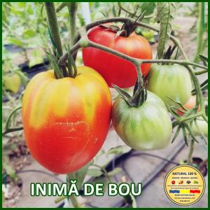 MIX 60 soiuri de legume crescute NATURAL 100% (transport gratuit oriunde in Romania) [6]
