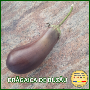 MIX 60 soiuri de legume crescute NATURAL 100% (transport gratuit oriunde in Romania) [16]