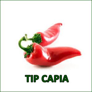 MIX 60 soiuri de legume crescute NATURAL 100% (transport gratuit oriunde in Romania) [14]