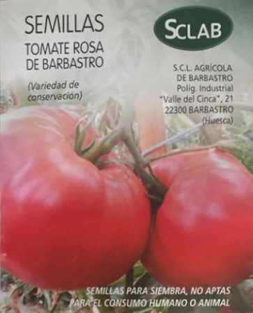 Rasad rosii ROSA DE BARBASTRO R065 mai.20210
