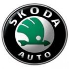 Navigatie dedicata Skoda