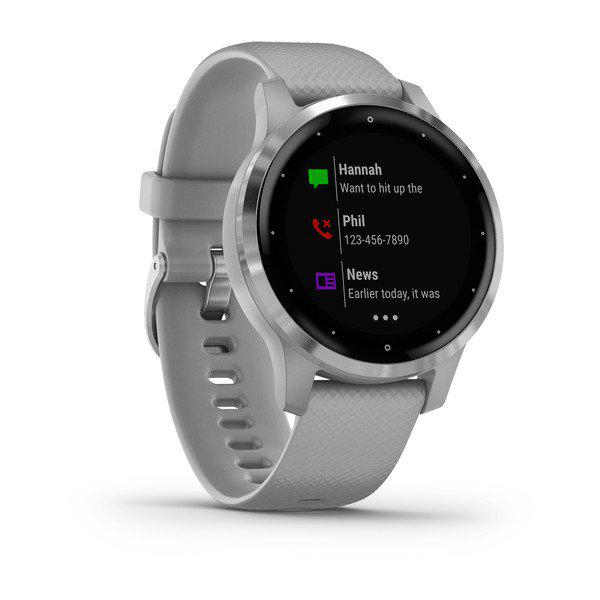 vivoactive 4S Powder Gray/Silver SEU GM 2