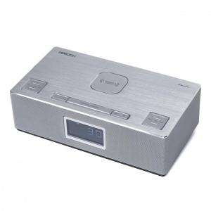 CLOCK RADIO 10W HORIZON SYS2.0 HAV-P42000