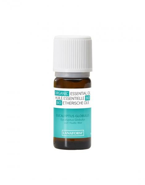Ulei esential organic cu aroma de eucalipt, 100% organic, expectorant si decongestionant 1
