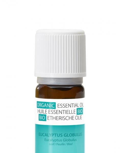 Ulei esential organic cu aroma de eucalipt, 100% organic, expectorant si decongestionant 2