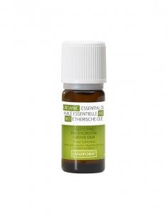 Ulei esential organic de pin scotian 100% organic, antiseptic si stimulalant, remediu natural pentru raceala si oboseala severa1