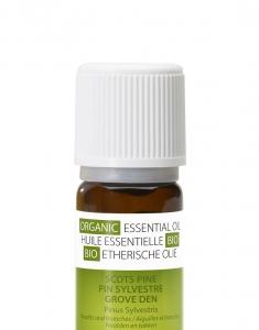Ulei esential organic de pin scotian 100% organic, antiseptic si stimulalant, remediu natural pentru raceala si oboseala severa2