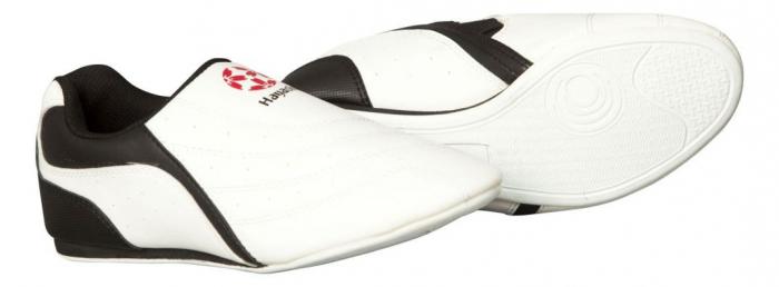 Pantofi pentru arte marțiale [0]