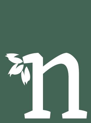 Ulei Esential Niaouli Pur Aromaterapie Melaleuca Quinquenervia
