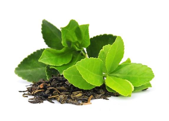 Ulei Esential Tea Tree 15ml [1]