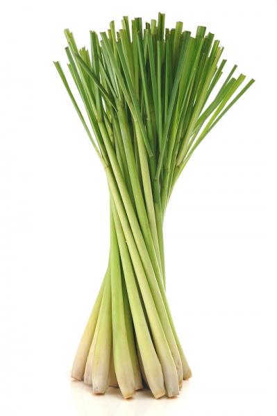 Ulei Esential Lemon Grass 15ml [1]