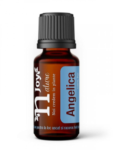 Ulei Esential Angelica Root 15ml [0]