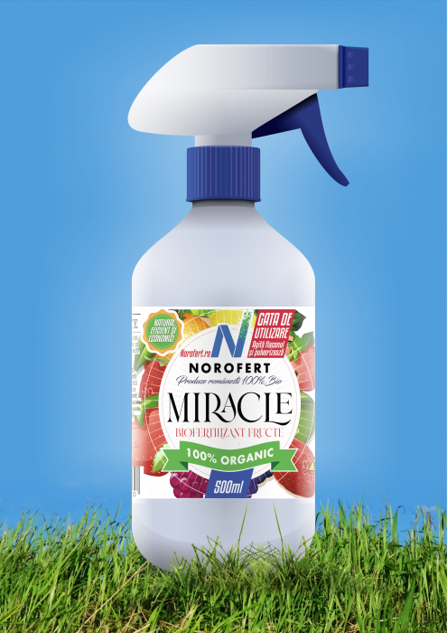 MIRACLE [2]