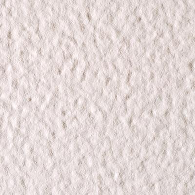 Blat compozit din piatră sinterizată Fossil Bianco Polare [0]