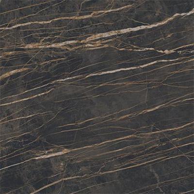 Blat compozit din piatră sinterizată Marmi Noir Desir Lucidato [0]