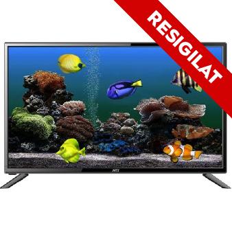 Televizor LED Nei, 61 cm, 24NE4000, HD
