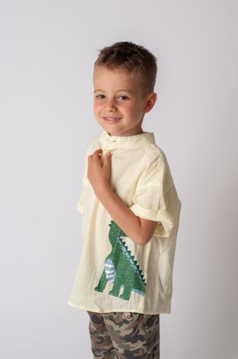 Camasa baieti cu imprimeu dinozaur [3]