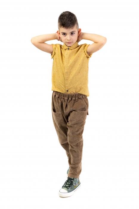 Pantaloni maro din catifea [2]